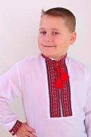 Детская вышиванка для мальчика Сергiйко (планка на молнии)   164-170 рост