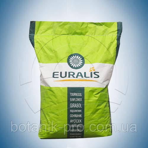 Семена подсолнечника ЕС Розалия (Euralis)