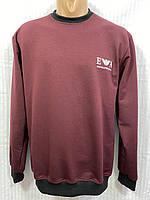 Батник мужской под резинку EA размер норма 48-54, цвет уточняйте при заказе