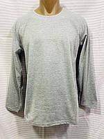 Батник мужской однотонный размер норма 46-52, цвет уточняйте при заказе