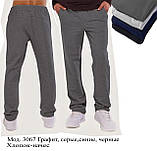 Штани чоловічі утеплені трикотаж-начіс, фото 2