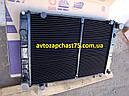 Радиатор Газель, Газ 3302, Газ 3221, Газ 2705, Соболь 2-х рядный, медно-латунный (производитель ШААЗ, Россия), фото 2