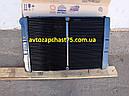 Радиатор Газель, Газ 3302, Газ 3221, Газ 2705, Соболь 2-х рядный, медно-латунный (производитель ШААЗ, Россия), фото 4