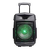 Аудио система колонка-чемодан Rojem HBPC816 boombass с пультом д/у и светомузыкой чёрная