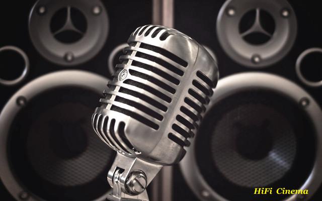 Профессиональная караоке система Your Day Lite Karaoke