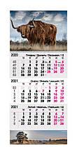 Календарь квартальный  2021 ( Бик Степовий)