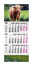 Календарь квартальный 2021 ( Бик Польовий)
