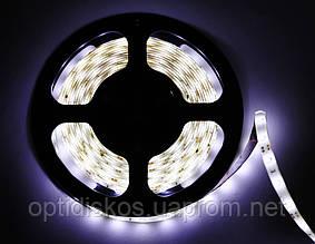 Светодиодная led лента белая, 3528, 60R Cold White, IP 33, 5м
