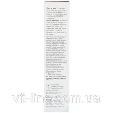 Derma E Инновационная увлажняющая сыворотка с пептидами и коллагеном  (60 мл), фото 2