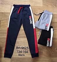 Штаны утеплённые для мальчиков оптом, Glo-story, размеры 134-164 арт. BRT-9625