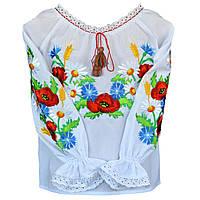 Сорочка вишита на дівчинку Польові квіти та колоски, фото 1