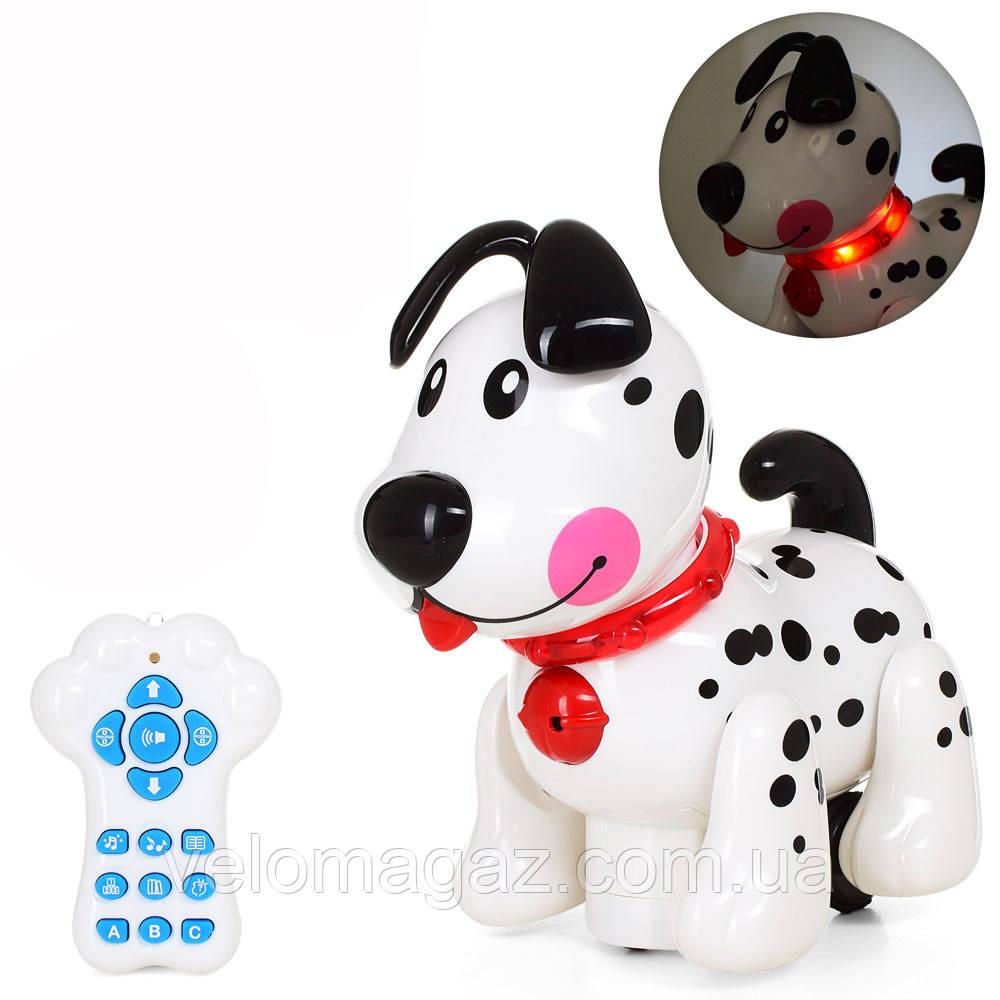 """Дитяча музична інтерактивна собака """"Little Flecik"""" 66001, акумулятор, пульт управління"""
