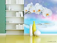 """Фотообои """"Хамелеон"""" Орхидея над водой"""