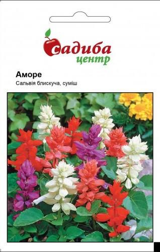 "Семена сальвии Аморе, 20 шт,""Садиба  Центр"",  Украина"