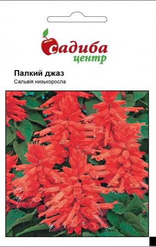 """Семена  цветов сальвия Пламенный Джаз, 0,1 г, """"Садыба центр"""",  Украина"""