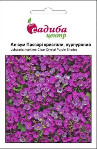 Семена цветов Алиссум Прозрочные кристаллы, пурпурные, 50шт, Садыба