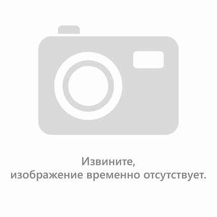 """Семена цветов Астра Картхаузер, 0,2 г, """"Елітсортнасіння"""""""