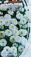 Семена цветов Пиретрум Девичий 0,2 г, Семена Украины