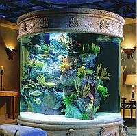 Перший запуск акваріума (інструкція)