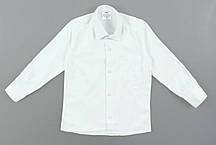 {есть:3 года 98 СМ} Рубашка для мальчиков,  Артикул: N2035 [3 года 98 СМ]