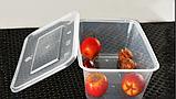 Контейнер для їжі з кришкою 1500 мл, фото 6