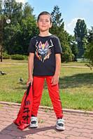 Спортивний костюм - трійка. костюм для мальчика, детская одежда 2 цвета 450грн костюм в школу