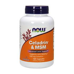 Комплекс для суставов и связок NOW Celadrin & MSM 120 caps