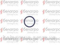 021-025-25-2-2 (100-3514028) Кольцо уплотнительное, Беларусь