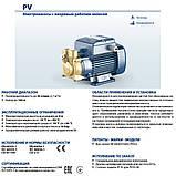 Выхревой электронасос Pedrollo PVm 81 (Италия), фото 4