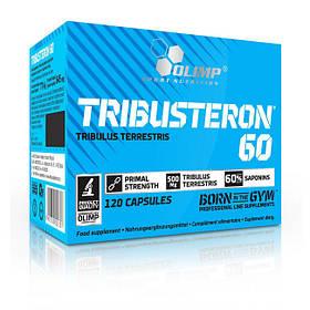 Трибустерон Olimp Tribusteron 60 (120 caps)