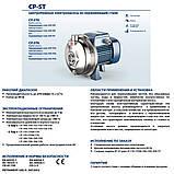 Центробежный промышленный насос Pedrollo CPm 158-ST6, фото 6