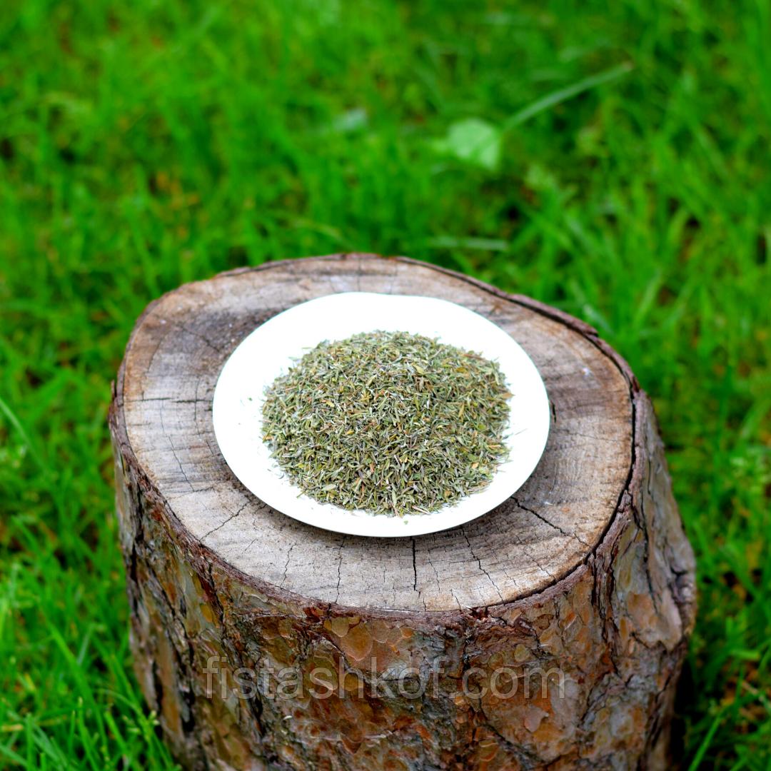 Чабрец трава (Тимьян)