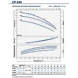 Центробежный насос трехфазный Pedrollo CP 230A (Италия), фото 6