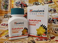 Гокшура Хималая, Gokshura Himalaya №60 -  для почек