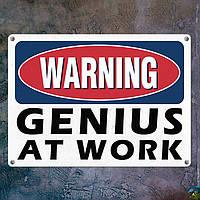 Табличка интерьерная металлическая Warning genius at work
