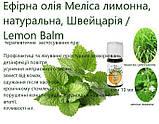 Ефірна олія Меліса лимонна, натуральна, Швейцарія / Lemon Balm, фото 3