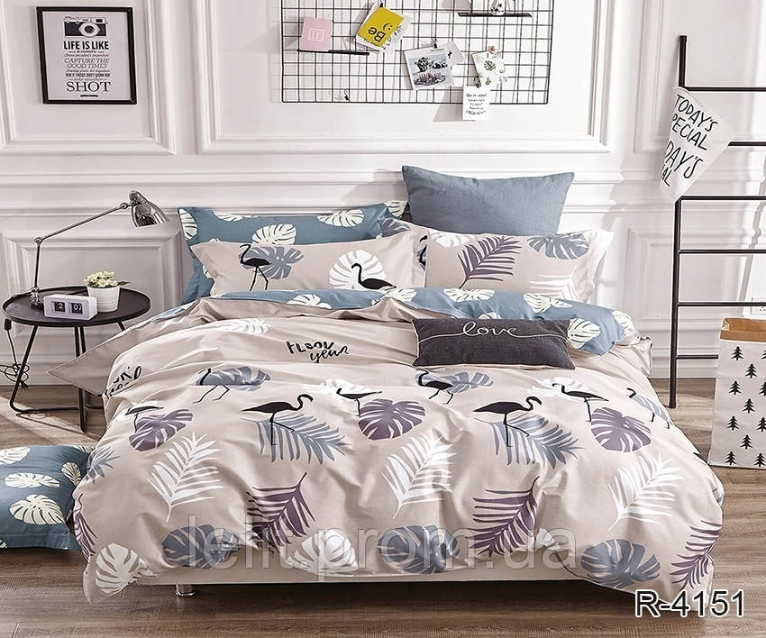 Полуторный комплект постельного белья с компаньоном R4151