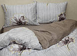 Полуторный комплект постельного белья с компаньоном S355, фото 6