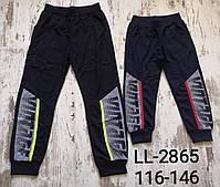 Спортивні штани для хлопчиків Sincere оптом, 116-146 рр. Артикул: LL2865
