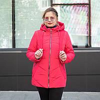 Весна женские Куртки большие размеры 54-68 малиновый