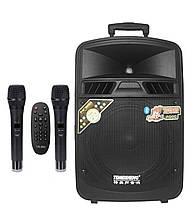 Аккумуляторная колонка, портативная акустика с микрофонами Temeisheng SL 10-05, ( USB/Bluetooth/2 микрофона )