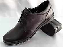 Комфортные кожаные туфли на шнуровке Bertoni