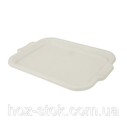 Піднос 420х320 мм (білий) Консенсус