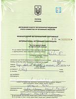 Получение фитосертификата при экспорте в Харьковской области