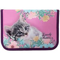 """Пенал Class PL """"Lovely Kitties"""" 210. 70D 20101C 1 отвод. 1 ярусн. пустой"""
