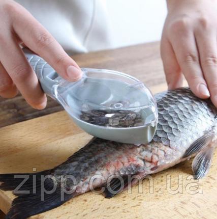 Рибочистка ручна з контейнером для луски Verte-X