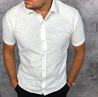 Мужская рубашка Stefano Ricci P0451 белая