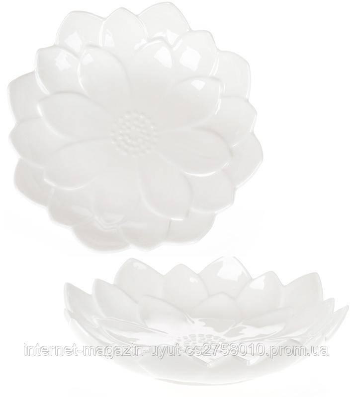 """Набор 6 фарфоровых блюд """"White City Астра"""" Ø25.5см, белый фарфор"""