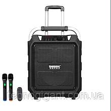 Портативная акустикческая система TemeishengSL12-10 с двумя радиомикрофонами на аккумуляторе.