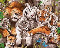 Картина за номерами Сімейство котячих 40х50 см